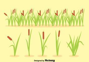 Reeds Sammlung Vektor