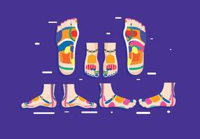 Reflexology Vector
