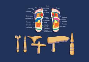Reflexology Equipment Vector
