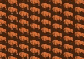 Motif transparent Buffalo