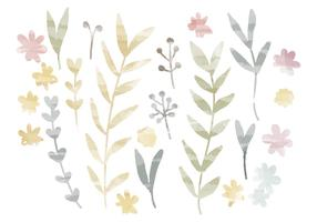 Vector Watercolor Branches