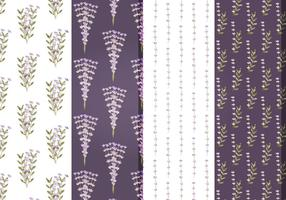 Vector floral de lavanda patrones