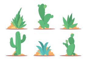 Cactus and Maguey Vector Set