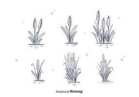 Handdragen Cattails Vector