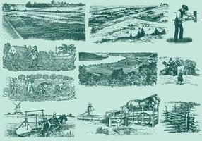 Farming Activities vector