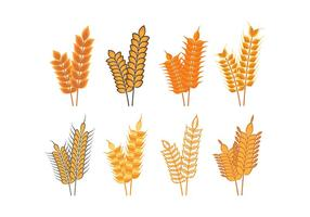 Harvest Oat Icons vector
