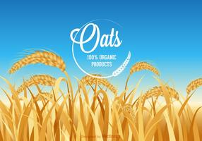 Free Oats Field Vector