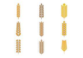 Livre tipos de grãos, cereais e vetor de aveia