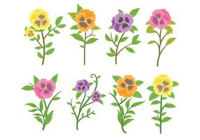 Pansy Icons Vector
