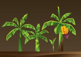 Banana Tree Cartoon Vector