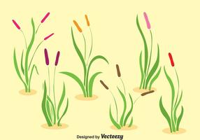 Reeds Collection Vector Set