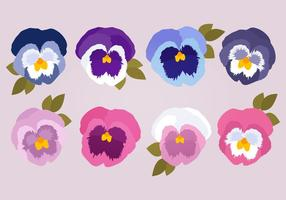 Pansies Vector Collectie