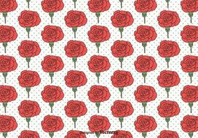 Motif sans couture Vector Carnation