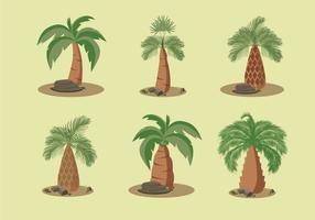 Palm oil trees vector illustration
