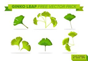 Hoja de Ginko paquete de vectores gratis