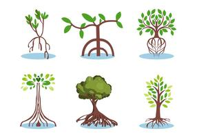 Mangrove vector set