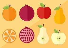 Rebanadas de frutas y vectores
