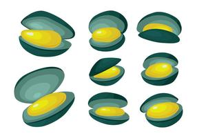 Free Mussel Vector