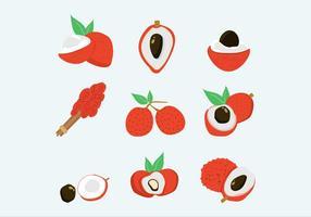 Lychee frutas vetores isolados