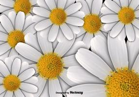 Vector de fondo floral