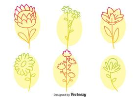 Blommor Collection Line Ikoner Vector