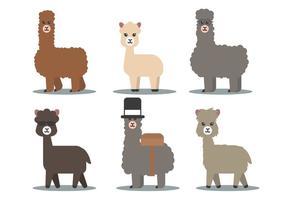 Vettore di alpaca
