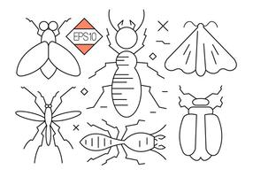 Bug e iconos de vector de insectos