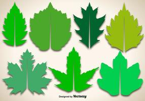 Editable Vector Maple Leaves