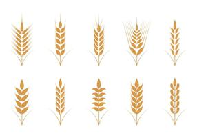 Oats Vector Pictogrammen