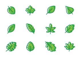 Verde brillante Hojas Vector