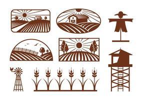 Vectores de campo de arroz
