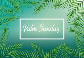 Vetor de fundo do domingo de palmeiras