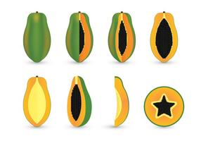 Papaya Vector Sets