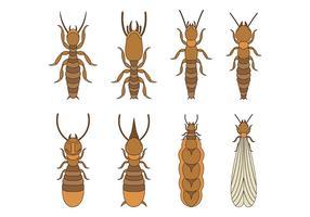Icônes vectorielles de termites