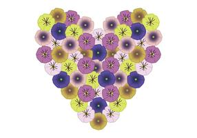 Pansy Heart vector