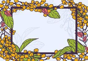 Flores mimosa amarelas como vetor de quadro