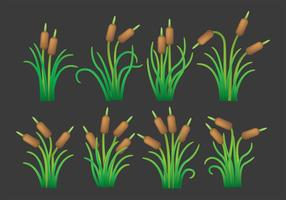 Cattails Vector Pictogrammen