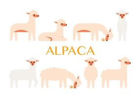 Alpaca vector icons