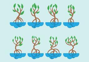 Mangrove vector