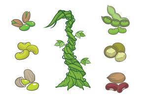Libre Beanstalk Iconos Vector