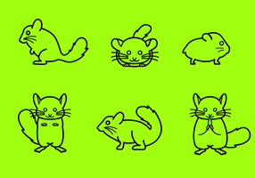 Free Chinchilla Vector