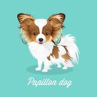 Free Vector Papillon Dog