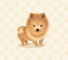 Pomeranian Dog Vector Illustration