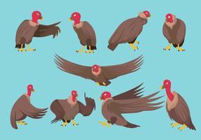 Free Condor Vector