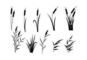 Free Reeds Vector