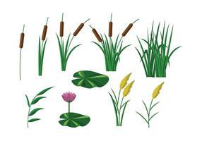 Gratis Reeds Vector