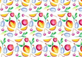 Vector Watercolor Fruit Illustration
