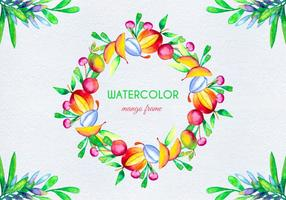Vector Watercolor Fruit Illustration