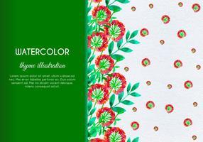 Vector libre mano dibujada acuarela tomillo con flores y hojas