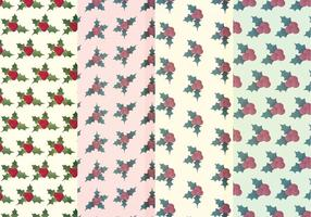 Vector Holly Winter Patterns